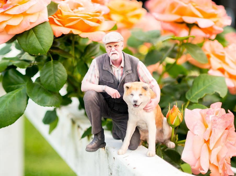 犬と老人トリミング.jpg